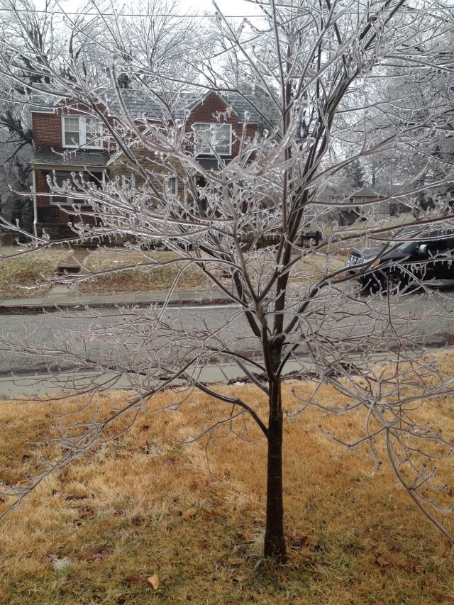 Ice Storm 2-14