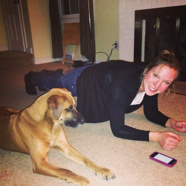 Watson was not impressed with my planking. Shortly after this, he stuffed one of his toys in my face. Gross.