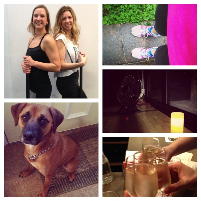 from bottom left: favorite workout buddy - Watson, favorite group class - Barre Fusion, favorite solo workout - running, favorite way to stretch - heated yoga, favorite way to celebrate - champagne!