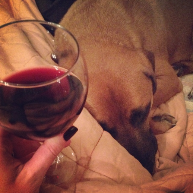 wine and watson