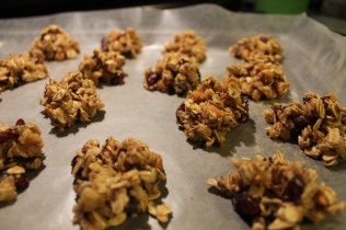 no bake protein clusters 2