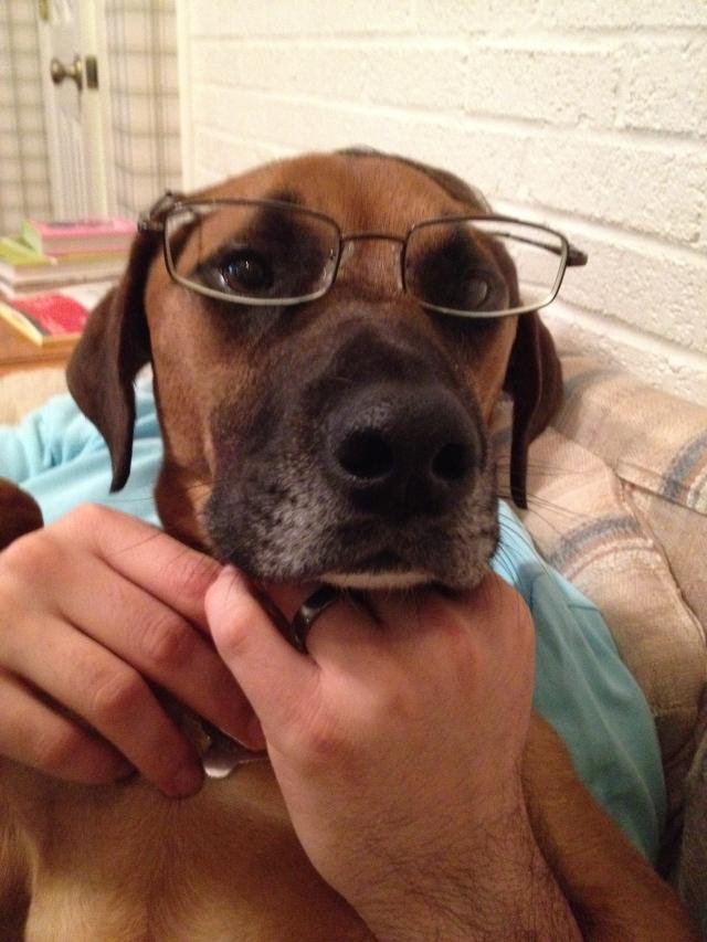W w glasses